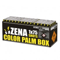 Color Palm Box