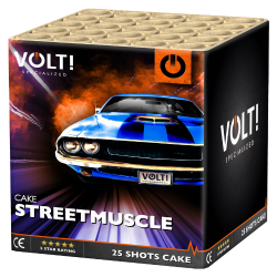 Streetmuscle